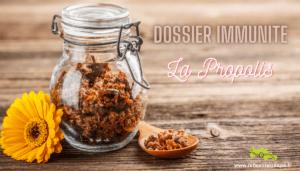 Dossier Immunité apithérapie propolis